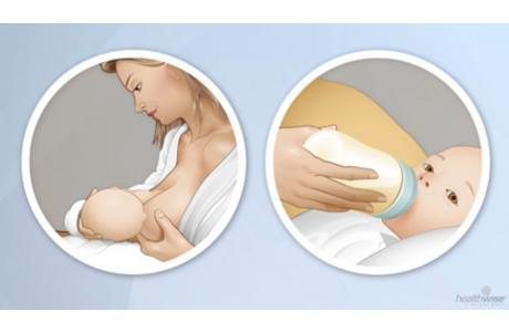 Cómo cuidar a su bebé recién nacido: Alimentación