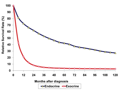 Graph shows relative survival rate (%) at 0−120 months after diagnosis of endocrine and exocrine cancer of the pancreas.
