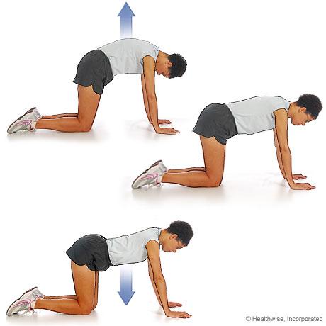Imagen de cómo hacer el ejercicio de gat-camello