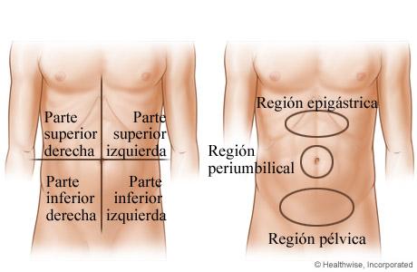 Zonas abdominales donde podría tener dolor